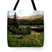 North Fork  Lake Colorado Tote Bag