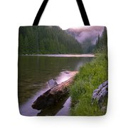 North Fork Of The Clearwater Tote Bag by Idaho Scenic Images Linda Lantzy