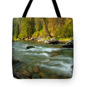 North Fork Of The St. Joe Tote Bag