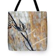 North Pond Prairie Grass Tote Bag