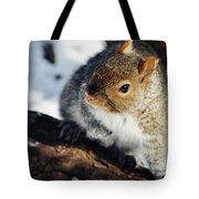 North Pond Squirrel Tote Bag