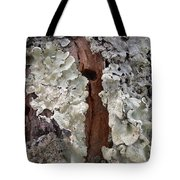 North Side Of A Tree Tote Bag