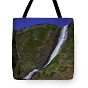 North Table Mountain Spring Falls Tote Bag