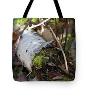 North Woods Mossy Birch Tote Bag