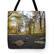 North Woods Road Two Tote Bag