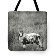 North Yorkshire Moors Sheep Tote Bag