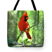 Northern Cardinal Proud Bird Tote Bag