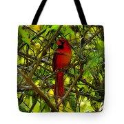Northern Cardinal Work Number Two Tote Bag
