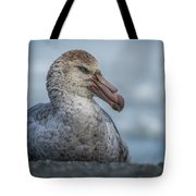 Northern Giant Petrel Sitting On Sandy Beach Tote Bag