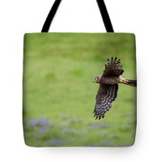 Northern Harrier Fly By Tote Bag