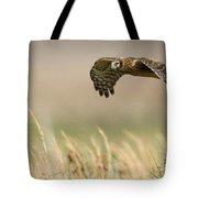 Northern Harrier Hawk Skimming The Fields Tote Bag