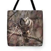 Northern Hawk Owl Having Lunch 9417 Tote Bag