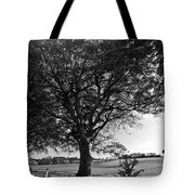 Northern Ireland 46 Tote Bag