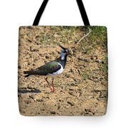 Northern Lapwing Tote Bag