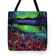 Northern Lights Embracing Poppies Tote Bag