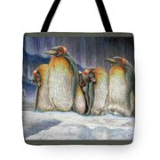Northern Lights - Goodnight Tote Bag