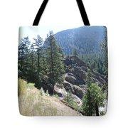 Northern Rockies Missoula  Montana  Tote Bag