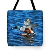 Northern Shoveler Duck Landing Tote Bag