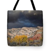 Northern Uintas Autumn Tote Bag