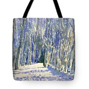 Norwalk River Valley Trail Tote Bag
