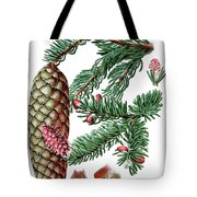 Norway Spruce, Pinus Abies Tote Bag