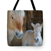 Norwegian Fjord Horse And Colt 1 Tote Bag