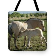Norwegian Fjord Horse And Colt Tote Bag