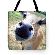 Nosey Cow Tote Bag