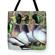 Who Is Taller? Tote Bag