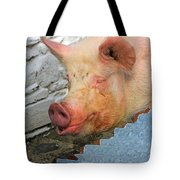 Not A Piglet Anymore Tote Bag