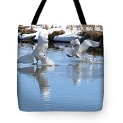 Not Always Graceful Tote Bag
