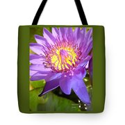 Appreciate Life Tote Bag