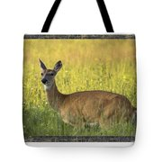 Not Just Bears Tote Bag