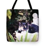 Not Just For The Birds Tote Bag by Cynthia Marcopulos