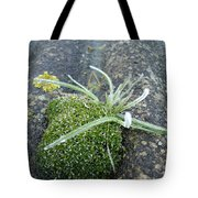 Not Quite A Roof Garden Tote Bag