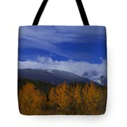 Not Yet Winter Tote Bag