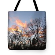 November At Twilight Tote Bag