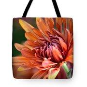 November Beauty Tote Bag