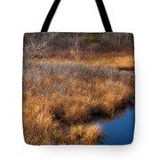 November Brook And Wetland Barren  Tote Bag
