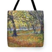 November In Hyde Park Tote Bag