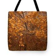 November Oak Tote Bag