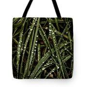 November Raindrops On Grass #1 Tote Bag