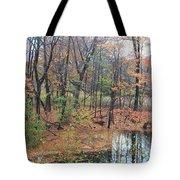 November Rainy Day In Waltham  Tote Bag
