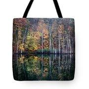 November Ripples Tote Bag