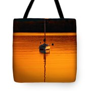 Nuclear Sunset Tote Bag by Meirion Matthias