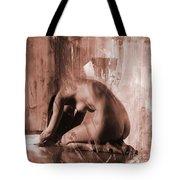 Nude 030a Tote Bag