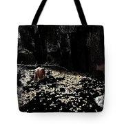 Nude In Monochrome  Leaf Pool Tote Bag