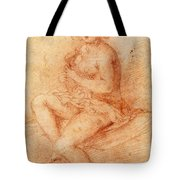 Nude Seated Woman Playing A Lute Tote Bag