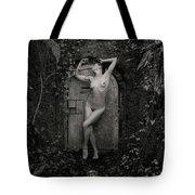Nude Woman And Doorway Tote Bag
