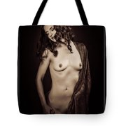 Nude Young Woman 1718.503 Tote Bag